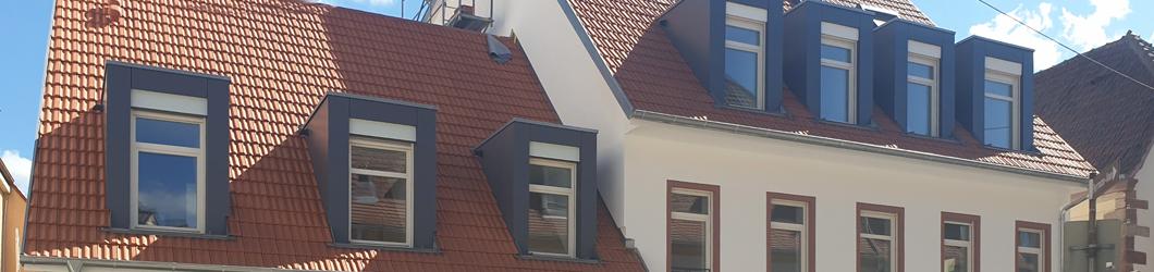 Neubau u. Umbau eines Gebäudeensembles  mit 6 WE & 1 Gewerbeeinheit | Speyer